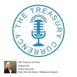 The Treasury Currency - Follow the Cash